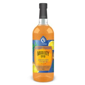 Mixology Ginger & Lemon Syrup